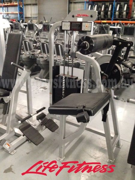 Life Fitness Low Back Extension