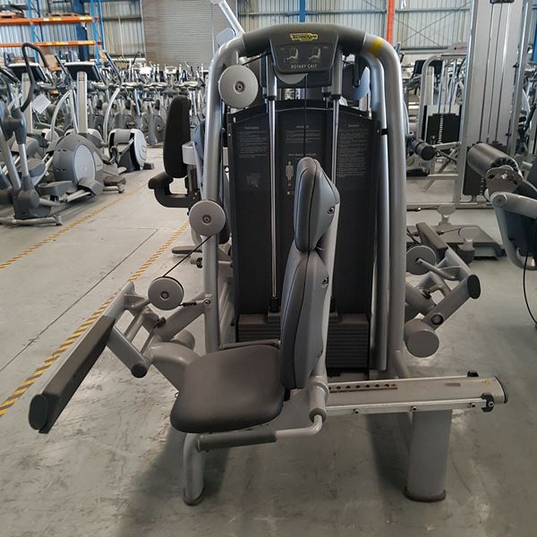 Technogym Selection Rotary Calf