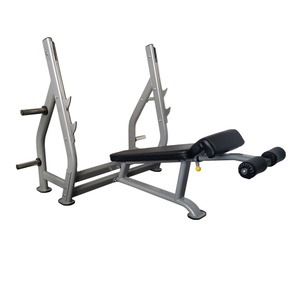 Genesis Decline Bench Press