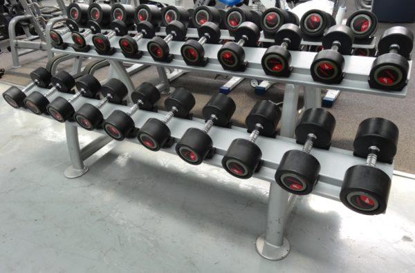 Life-Fitness-Dumbbells-Rack